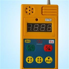 CELH50便携式二氧化硫检测报警仪