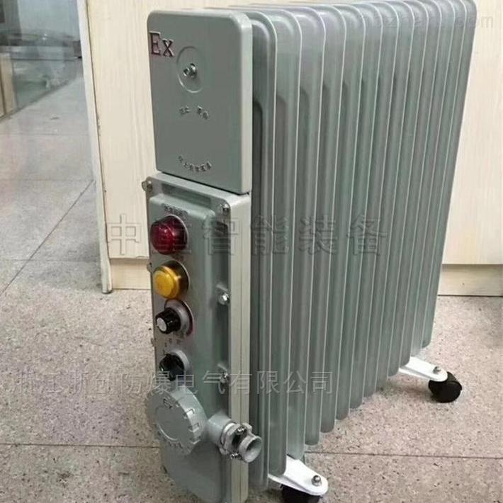 RB-2000127(A)防爆电热油酊