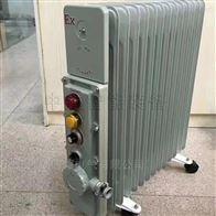 RB-2000127(A)RB-2000127(A)防爆电热油酊