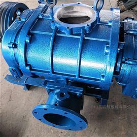 CGSR200H污水处理厂曝气高压罗茨鼓风机