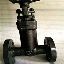 WJ41H-25C-波纹管锻钢截止阀