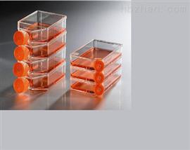 3T3-Swiss albino小鼠胚胎成纖維細胞