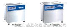 单槽式双频数控超声波清洗器