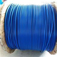 HYA23双层钢带绕包铠装通信电缆