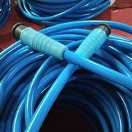生产FF、FFP、FF22、FFP222耐高温电缆