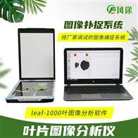 FT-leaf植物叶片图像分析系统