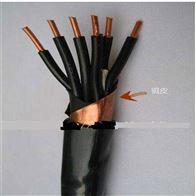 生产DYVRP |DYVP3|DYVRP3仪表信号电缆