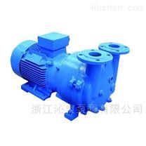 沁泉 2BV系列水环真空泵