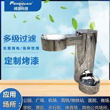 FYC02-01公园直饮水机