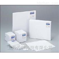 ADVANTEC玻璃纤维滤纸