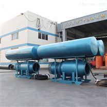 抗洪排涝大流量双浮筒式潜水轴流泵