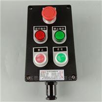 FZC-S-A2D4B2G 挂式三防操作柱