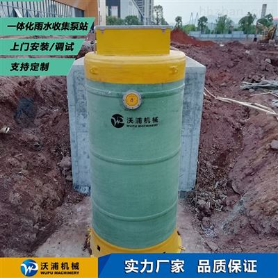 WP.pro-6市政排水泵站