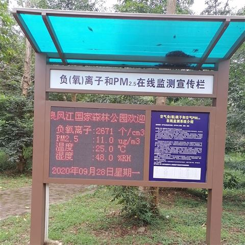 深圳制造商专业负氧离子24小时在线监测设备