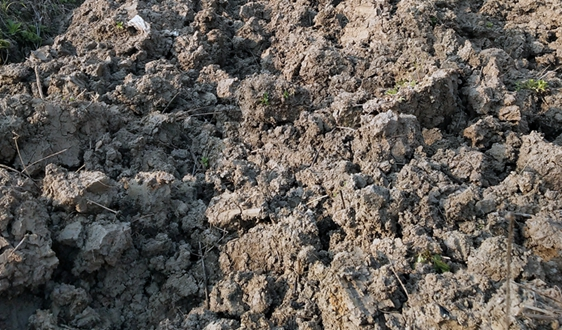 《关于加强土壤污染防治项目管理的通知(征求意见稿)》