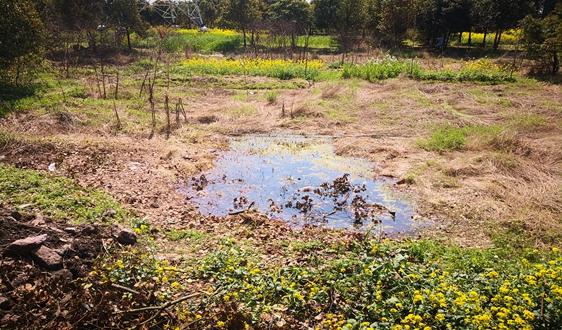 农村污水处理15年后爆发2000亿市场 模式以分散式为主