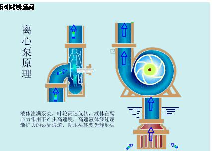 卧式离心泵工作原理图