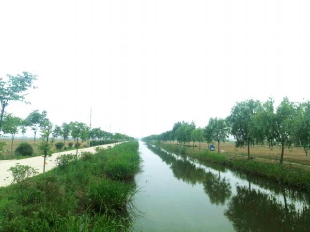 江苏省滨海县滨海港镇精准发力推动环境整治