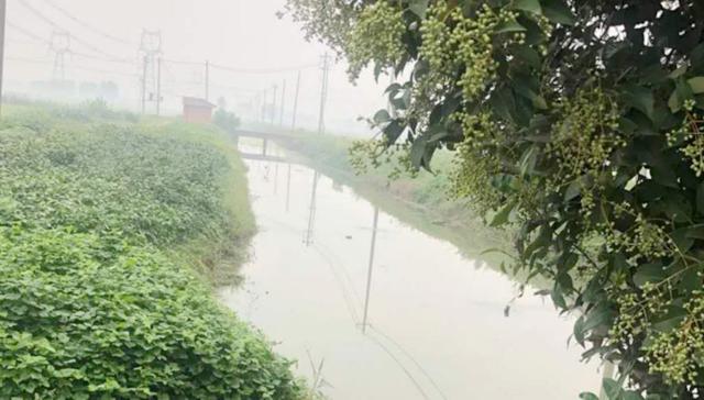 江苏省滨海县天场镇落细落实河长制保护水环境