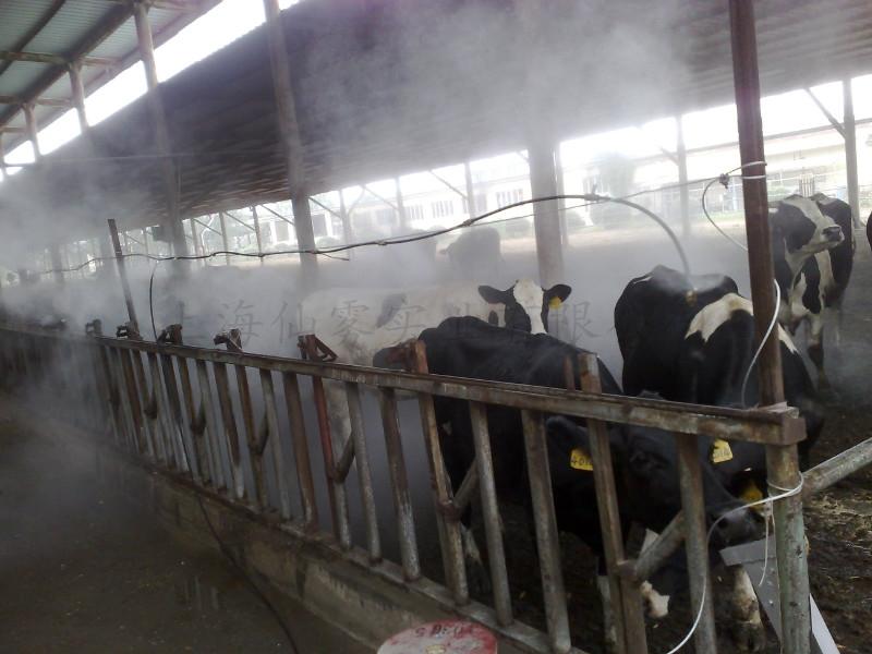 喷雾消毒系统,养殖场喷雾消毒设备,鸡舍喷雾消毒装置