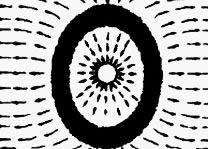 长方形池(长:宽<1.5:1)