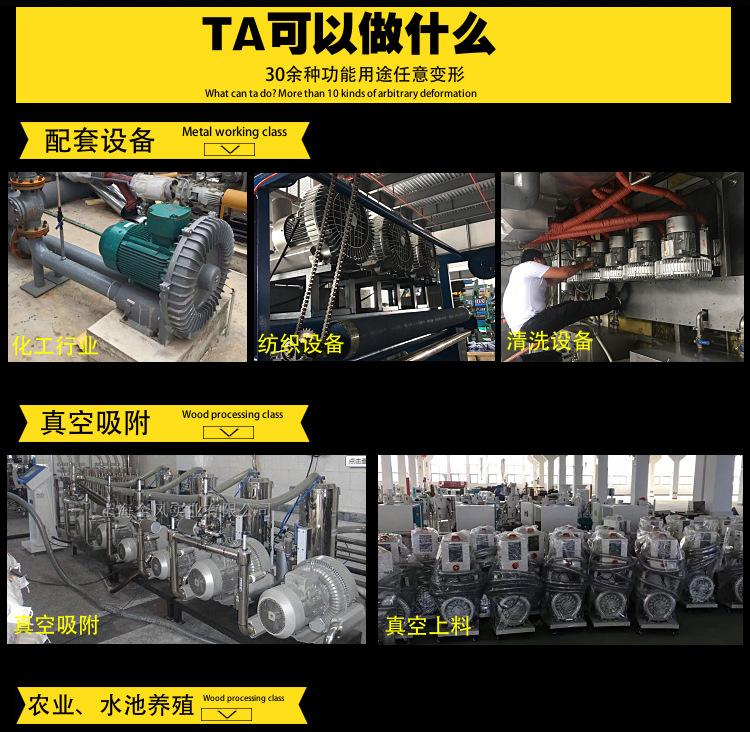 厂家立式 LYX-94S-1旋涡气泵 功率15kw立式高压旋涡气泵 高压旋涡气泵示例图8