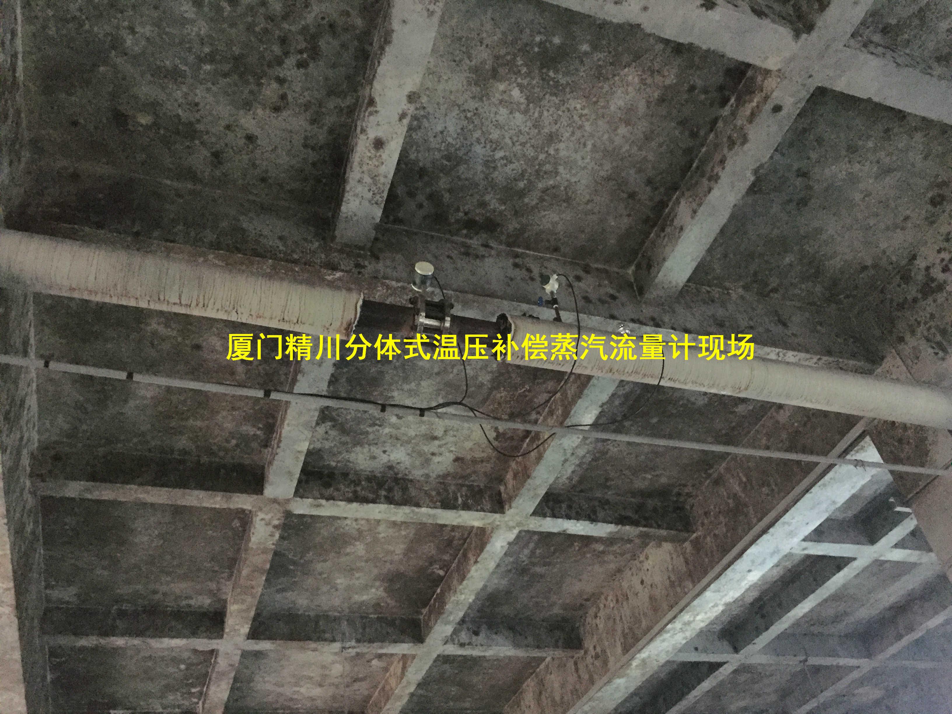 厦门精川锅炉蒸汽流量计