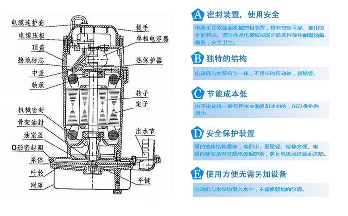 QDX潜水泵结构图