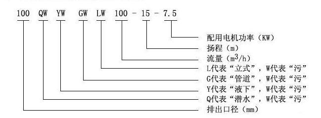 LW立式排污泵型号意义