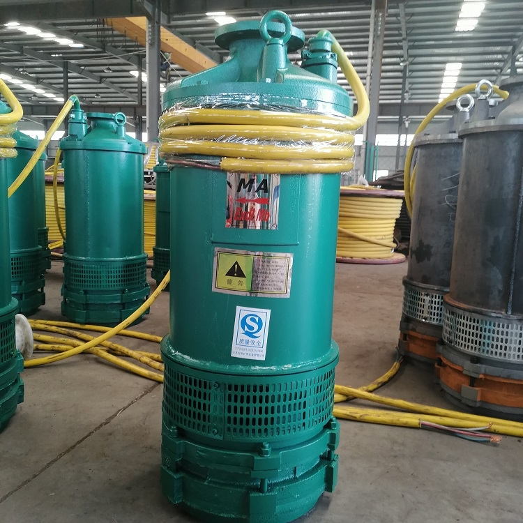 BQS内装式矿用潜水泵