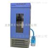 HSX-250HSX-250恒溫恒濕培養箱