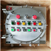 BXMD53二硫化碳防爆照明动力配电箱开关控制箱IIC